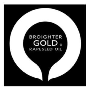 Broighter Gold square